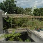 台風9号・屋上の棚大被害