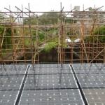 台風8号・屋上竹棚の対策