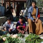 ブータン染織調査の旅