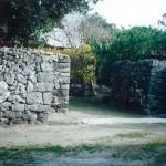 喜界島 阿伝 1